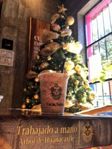 Cacao Nativa – et must i San Cristóbal de las Casas